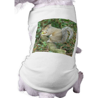 Squirrel with Acorn Dog T Shirt