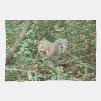Squirrel with Acorn Kitchen Towel