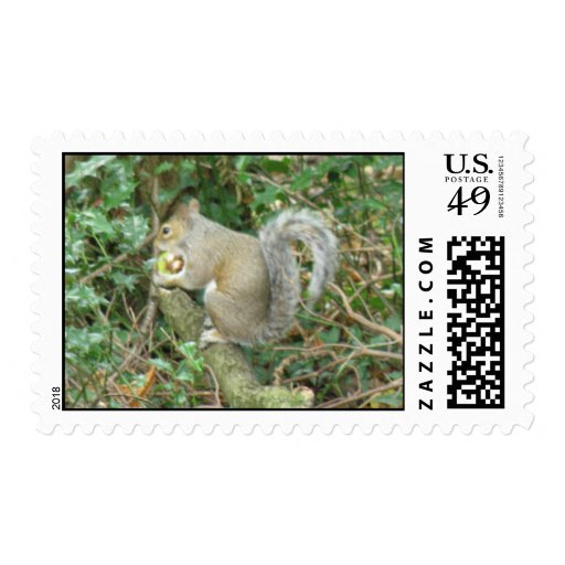 Squirrel with Acorn Postage Stamp