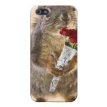 Squirrel with Bouquet of Red Roses Cases For iPhone 5