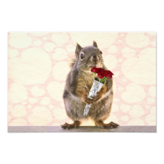 Squirrel with Bouquet of Red Roses Photo Print