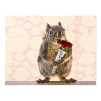 Squirrel with Bouquet of Red Roses Postcard