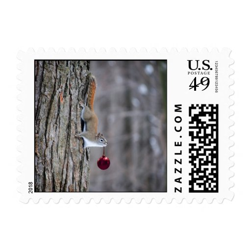 Squirrel with Christmas ornament Postage - Square