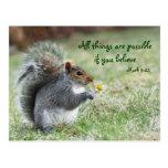 Squirrel with Daisy Mark 9:23 Verse Postcard