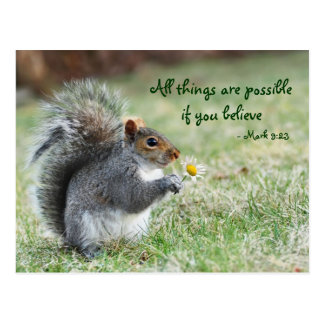 Squirrel with Daisy Mark 9:23 Verse Post Card