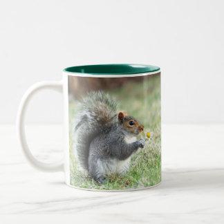 Squirrel with daisy Two-Tone coffee mug