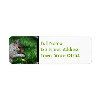 Squirrel with Nut Address Labels