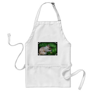 Squirrel with Nut Apron