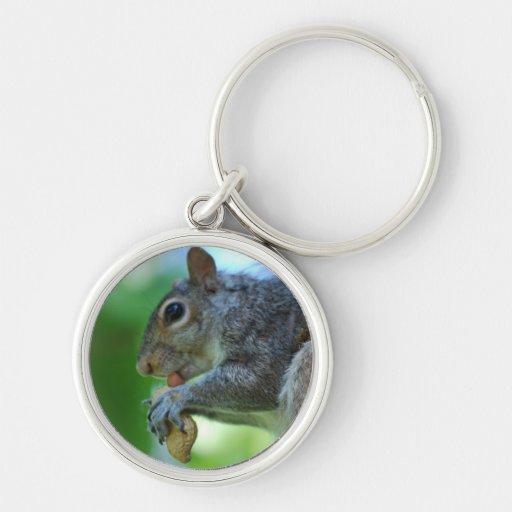 Squirrel with Nut Keychain