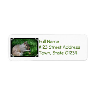 Squirrel with Nut Mailing Labels