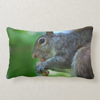 Squirrel with Nut Pillow