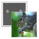 Squirrel with Nut Pin