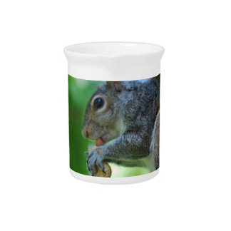 Squirrel with Nut Pitcher