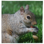Squirrel with Nut Set of Four Napkins