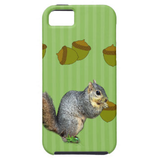 Squirrel with Nuts iPhone SE/5/5s Case