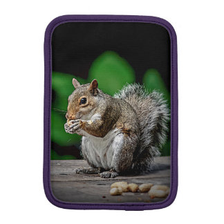 Squirrel with peanuts sleeve for iPad mini