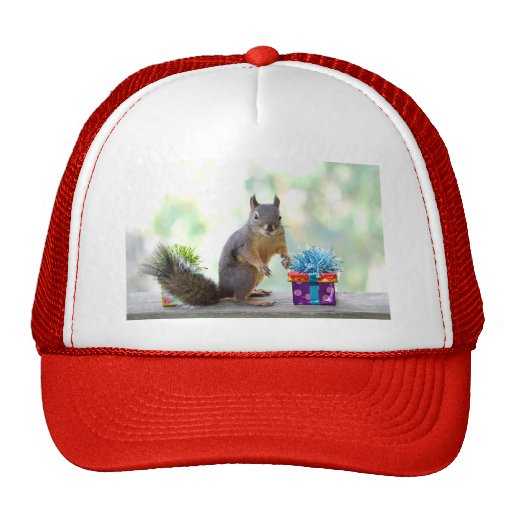 Squirrel with Wrapped Presents Mesh Hat