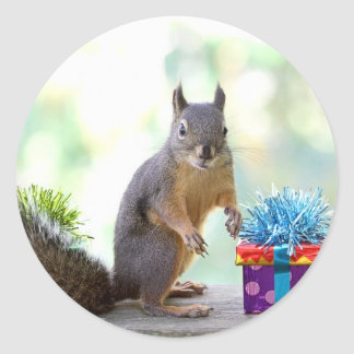 Squirrel with Wrapped Presents Round Sticker