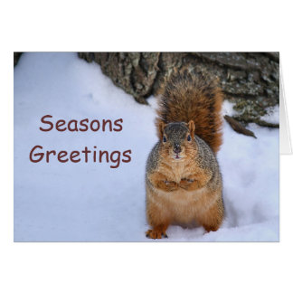SquirrelChristmas Stationery Note Card