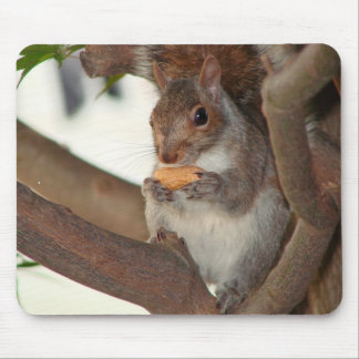 squirrelfriend mouse pad