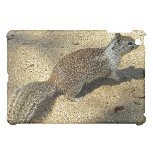 Squirrell iPad Mini Covers