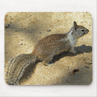 Squirrell Mouse Pad