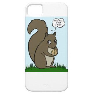 Squirrelly Squirrel & the Nutty Brain iPhone 5 Case