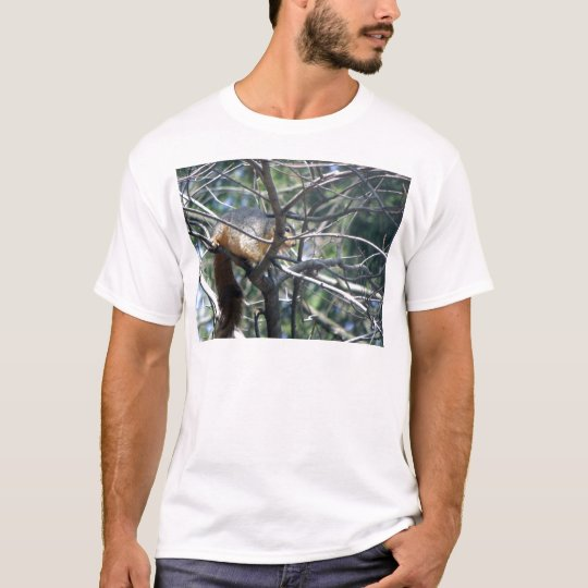 Squirrelly T-Shirt