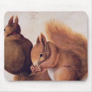 Squirrels, 1512 mouse pad