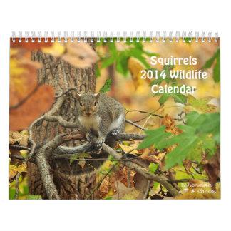 Squirrels - 2014 Calendar