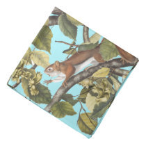 Squirrels Animal Tree Squirrel Pattern Print Blue Bandana