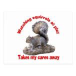Squirrels at Play Post Card