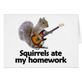 Squirrels ate my homework card