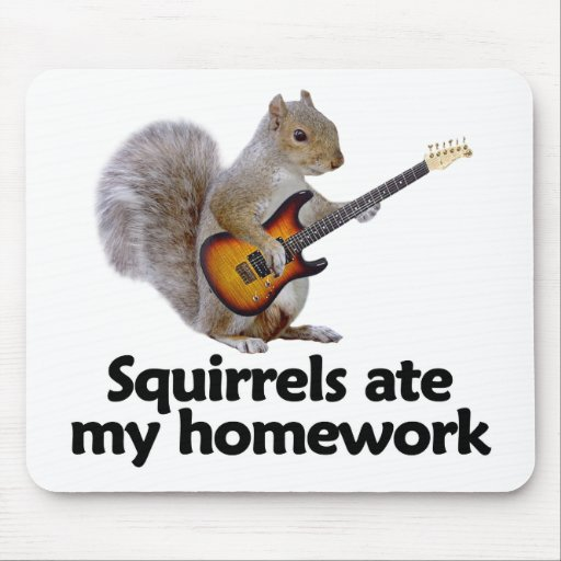 Squirrels ate my homework mouse pad