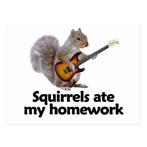 Squirrels ate my homework postcard