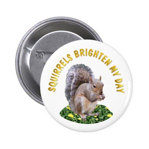 Squirrels Brighten My Day Pinback Buttons