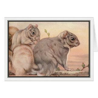 Squirrels by E. J. Detmold Card