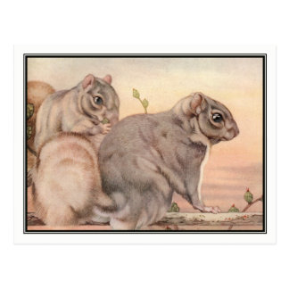 Squirrels by E. J. Detmold Postcard