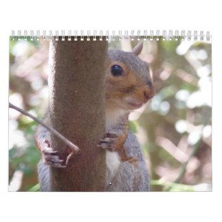 Squirrels Wall Calendar