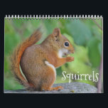 """Squirrels Calendar<br><div class=""""desc"""">Nature calendar with adorable images of red squirrels to enjoy all year.</div>"""