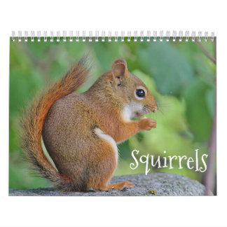 Squirrels Calendar