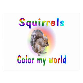 Squirrels Color My World Postcard