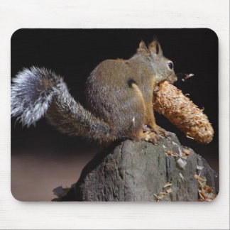 Squirrels Eating Tails Pinecones Mouse Pads