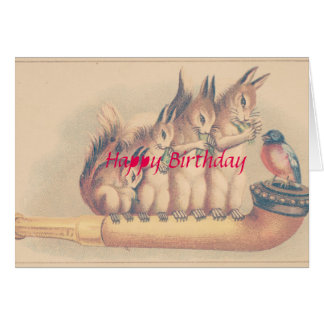 Squirrels Happy Birthday Card