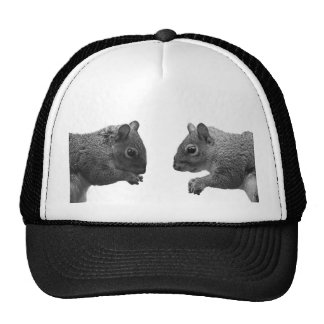 Squirrels  Hat/Cap Trucker Hat
