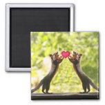 Squirrels in Love Photo Magnet