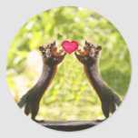 Squirrels in Love Photo Round Sticker
