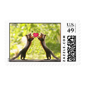 Squirrels in Love Photo Stamp