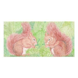 Squirrels Photo Card