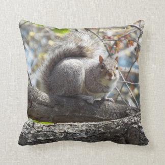 squirrels pillow